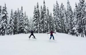 Skiing - spread eagle