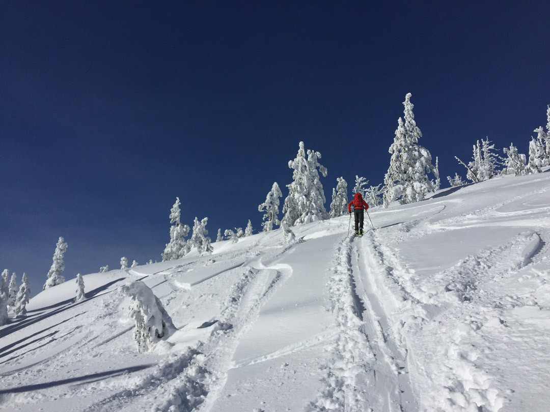 Skiing the Cinder Cone