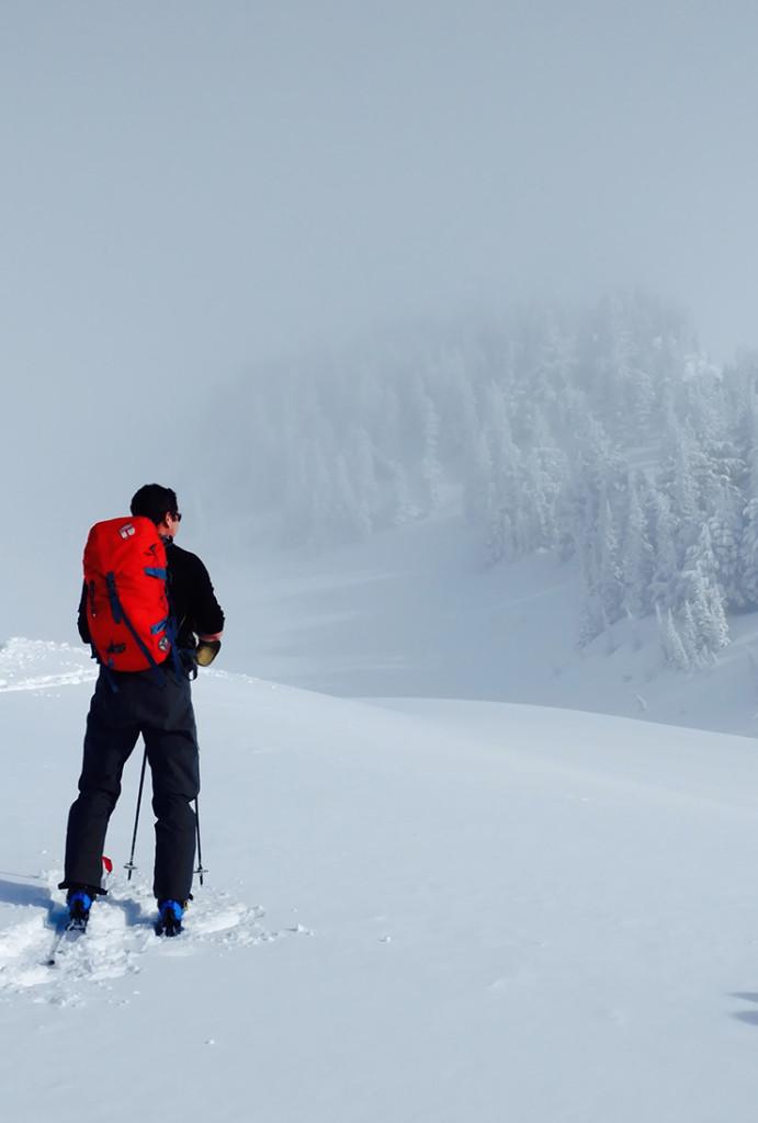 Backcountry skiing Mt. Rainier