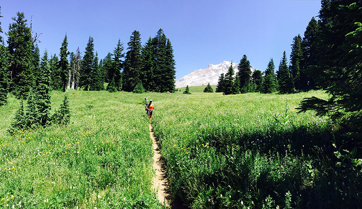 Mt. Hood Timberline Trail