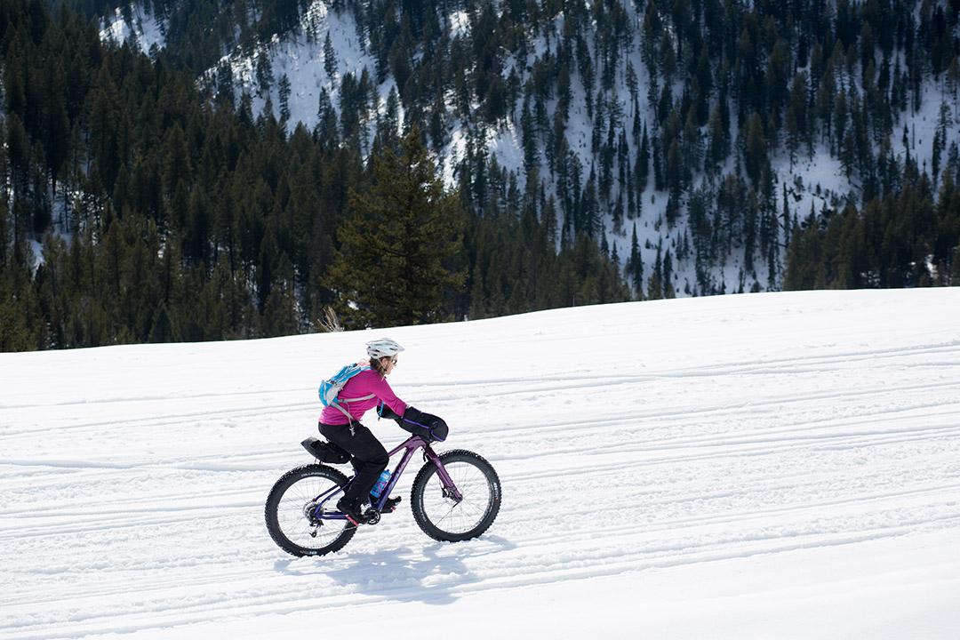 Fat Biking Mesa Trail Jackson Hole