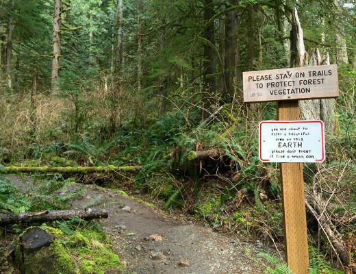 Mt Si Trail